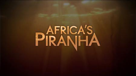 Africa's Piranha (2015)