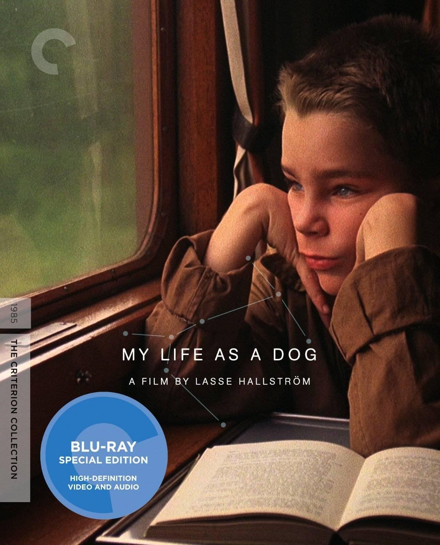 My Life As A Dog / Mitt liv som hund (1985)