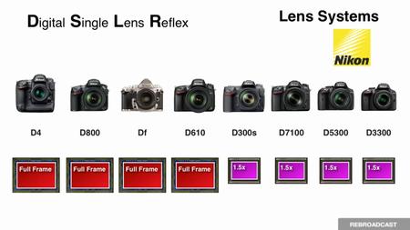 creativeLIVE: Fundamentals of Digital Photography 2014 with John Greengo [repost]