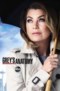 Grey's Anatomy S15E18