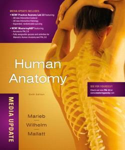 Human Anatomy, Media Update [Repost]