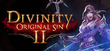 Divinity: Original Sin 2 (In dev)
