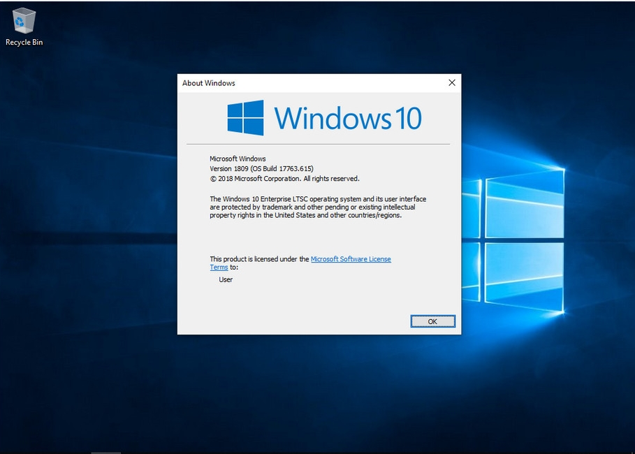 Windows 10 Enterprise LTSC 2019 version 1809 Build 17763 615