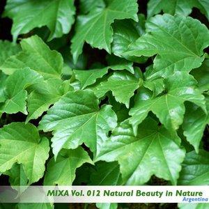 Mixa Vol. 012 Impressive Natural Beauty in the Nature