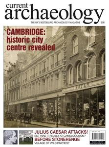 Current Archaeology - Issue 208