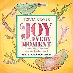 Joy in Every Moment: Mindful Exercises for Waking Up to the Wonders of Ordinary Life [Audiobook]