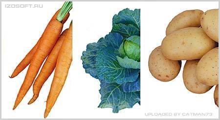 Izosoft Vegetables