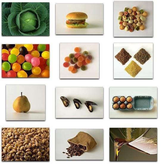 PhotoAlto Vol. 003 Gastronomy