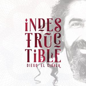 Diego EL Cigala - Indestructible (2016) {Sony}