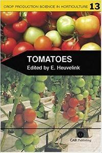 Tomatoes (Repost)