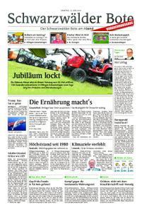 Schwarzwälder Bote Blumberg - 15. Juni 2019