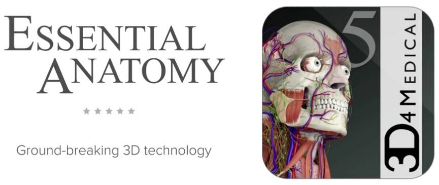 Essential Anatomy 5 5 0 / AvaxHome