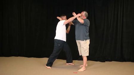 Bruce Frantzis - Old Yang Style Tai Chi (Month 1-5)