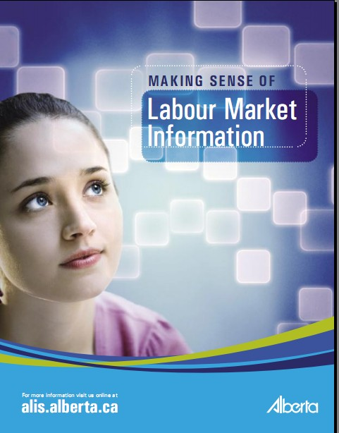 Making Sense of Labour Market Information (2008)