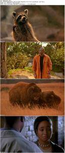 Dr Dolittle 2 2001 Avaxhome