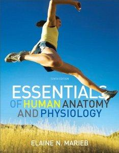 Essentials of Human Anatomy & Physiology (10th Edition) (repost)