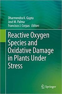 Reactive Oxygen Species and Oxidative Damage in Plants Under Stress [Repost]