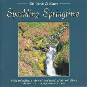 Download mp3 full flac album vinyl rip Magical Breeze - David A. Jackson - Sparkling Springtime (CD)