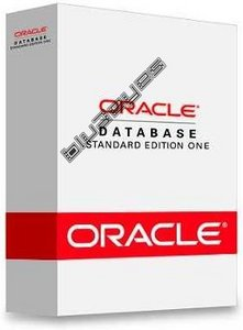 Oracle Database 10g: Administration Workshop I ,II,SQL Fundamentals Class- 10CD