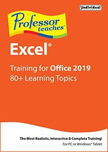 Individual Software Professor Teaches Excel 2019 v1.0