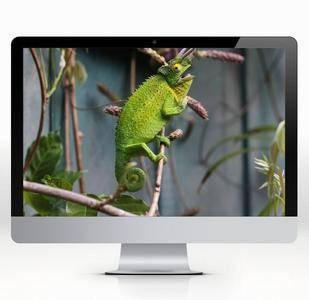 5120x2880 5K iMac Wallpapers 14