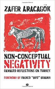 Non-Conceptual Negativity: Damaged Reflections on Turkey by Zafer Aracagök