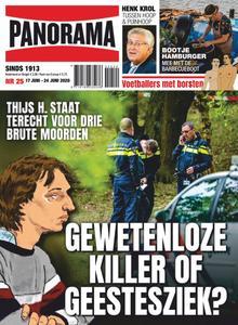 Panorama Netherlands - 17 juni 2020