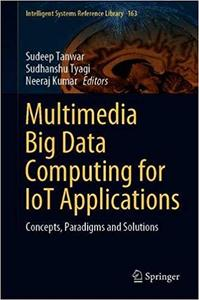 Multimedia Big Data Computing for IoT Applications: Concepts, Paradigms and Solutions