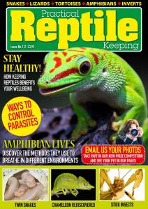 Practical Reptile Keeping - Issue 131 - November 2020
