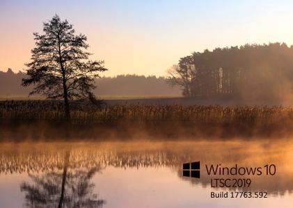 Windows 10 LTSC version 1809 (Build 17763.592) Enterprise
