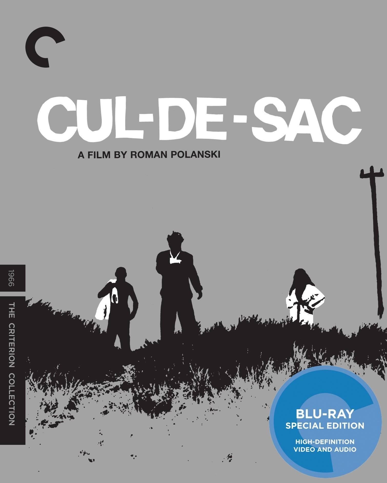 Cul-De-Sac (1966) [The Criterion Collection]