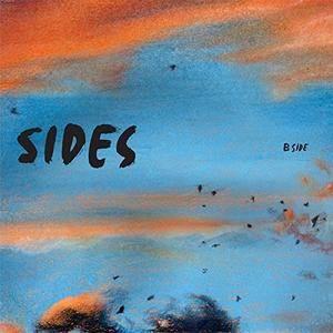 Perpetuum Jazzile - Both Sides: B Side (2016)