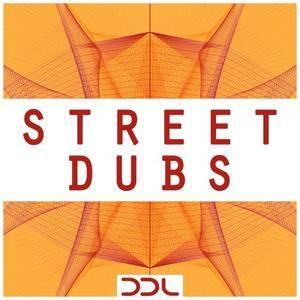 Deep Data Loops Street Dubs WAV MiDi