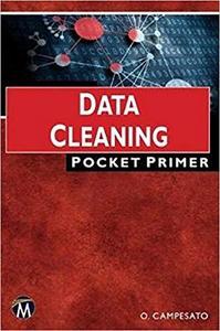 Data Cleaning: Pocket Primer