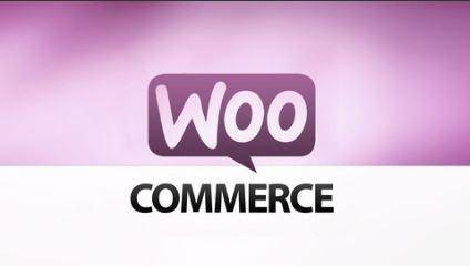 Learn How to Build an E-Commerce Website by WordPress (2016)