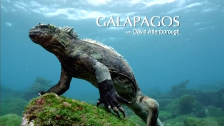BSkyB - Galapagos with David Attenborough (2013)