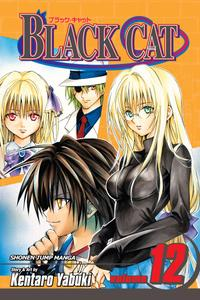 Black Cat v12 (2008) (Digital) (aKraa