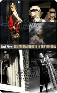 Stock Photo: Female mannequin in the window