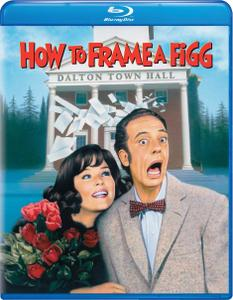 How to Frame a Figg (1971)