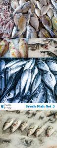 Photos - Fresh Fish Set 7