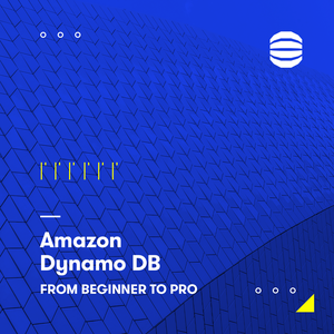 AWS DynamoDB   From Beginner to Pro