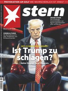 Der Stern - 20. Juni 2019