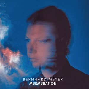 Bernhard Meyer - Murmuration (2018)
