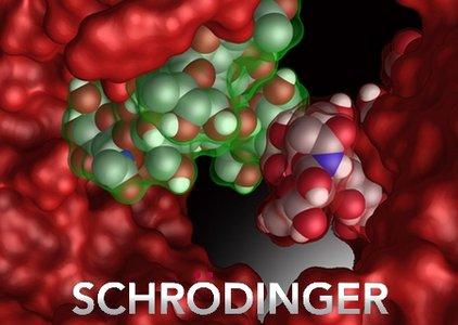 Schrödinger Suites 2018-4