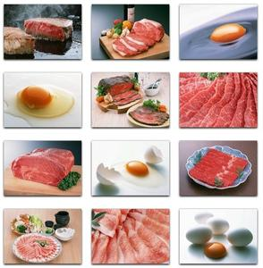 Datacraft Sozaijiten Vol. 130 Fresh food - Meat & Eggs