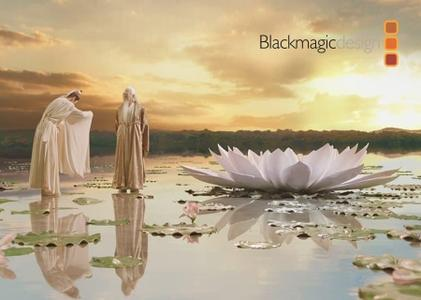 Blackmagic Design Fusion Studio 16 Beta 1