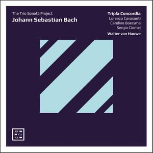 Walter van Hauwe & Tripla Concordia - Bach: The Trio Sonata Project (2019) [Official Digital Download]