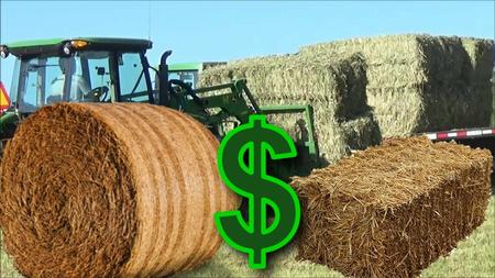 How to Start a Successful Hay Bale Business (Master Class)