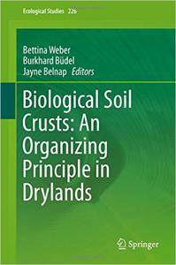 Biological Soil Crusts: An Organizing Principle in Drylands