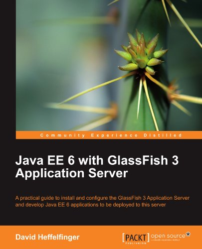 Java EE 6 with GlassFish 3 Application Server (repost)